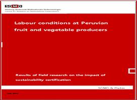 Condiciones laborales de los  productores peruanos de frutas y verduras